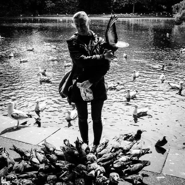 Lady feeding pigeons in St Stephen's Green Dublin